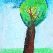дерево-тимофей