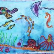 морские-животные